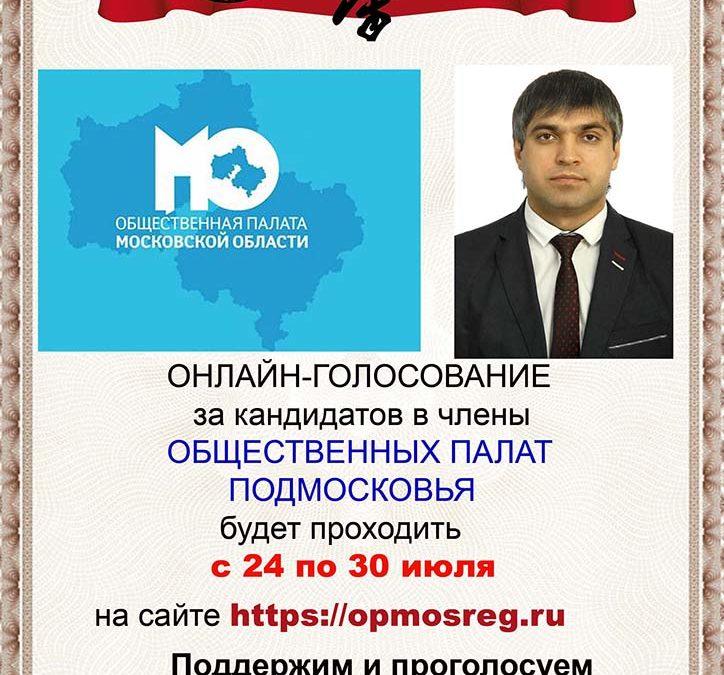 Голосование за кандидатов в члены Общественных палат Подмосковья